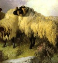 Horlor George W  Highland Scene With Sheep And Grouse