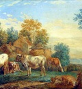 Maris Willem Cattle in the meadow Sun