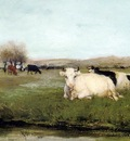 Maris Willem Cow in the meadow Sun