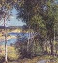 metcalf a family of birches