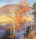 metcalf closing autumn