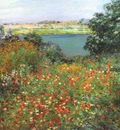metcalf the poppy garden