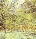 Claude Monet Lemon Trees  Bordighera
