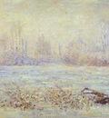Monet Hoarfrost, near Vetheuil