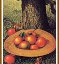 PrenticeLeviWells Apples HatandTree We