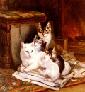 Ronner Knip Henriette The Happy Litter