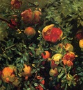Sargent John Singer Pomegranates