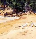 Sargent John Singer Sand Beach Schooner Head Maine