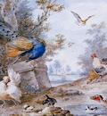 Schouman Aert Bird piece Sun
