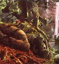 lrs Taylor Geoff Merlins Wood cover