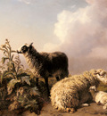 Tschaggeny Edmond Jean Les Moutons