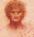 Leonardo da Vinci Old man with ivy wreath and lion s head