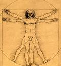 proportions of the human figure, leonardo da vinci, 1485