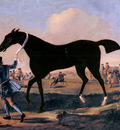 Wootton John The Duke Of Rutlands Bonny Black Held By A Groom At Newmarket