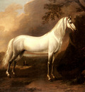 Wyck Jan A Grey Arab Stallion In A Landscape