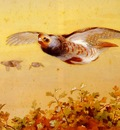 Thorburn Archibald English Partridge In Flight