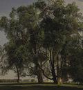 prater landscape