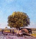 Chestnut Tree at Saint Mammes