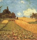 Wheatfields near Argenteuil