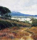 california poppy field 1918