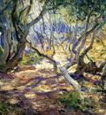 oak grove carmel
