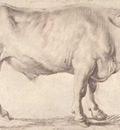bull 1618