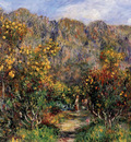 landscape with mimosas