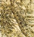 Ivy Trees at Asylum