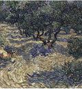 Olive Grove1889