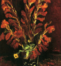 still life  vase with gladiolas
