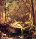 The Mountain Brook