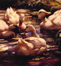 Ducks in a Forest Pond
