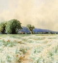 Bricher Alfred Thompson The Daisy Field