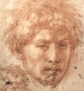 ANDREA DEL SARTO Head Of A Young Man