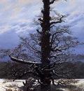 FRIEDRICH Caspar David The Oaktree In The Snow