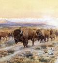 Russell Charles Marion The Bison Trail