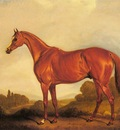 Ferneley John A Portrait Of The Racehorse Harkaway