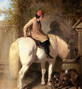 Herring Jnr  John Frederick Refreshment A Boy Watering His Grey Pony