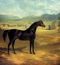 Herring Sr John Frederick The bay Stallion Jack Spigot
