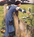 The Flower Picker JW