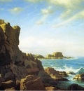 Haseltine William Stanley Nahant Rocks