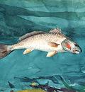 Homer Winslow Channel Bass