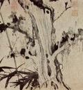 wang t ing yuen