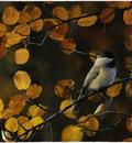 Robin Murray Autumn Glow- Chickadee