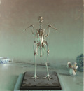 sprick chicken skeleton lg
