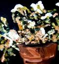 Tina Vanbiervliet - Post Impressionism