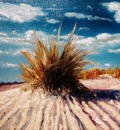 Geert Coucke - On the beach