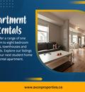 Kingston Apartment Rentals